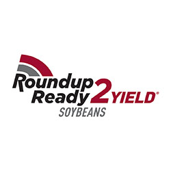 Local-Seed-Soybean-Product-Trait-R2S-Roundup-Ready-2-Yield®-Soybeans-STS®
