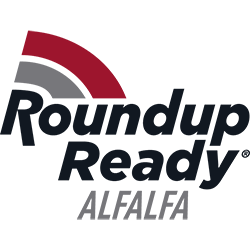 Roundup_Ready_Alfalfa